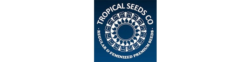 Tropical Seeds Co. regular