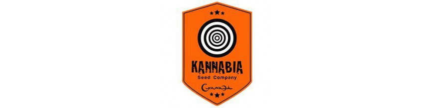 Kannabia Seeds regular